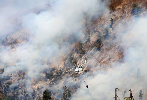 Borjomi Still Not Ready For Forest Fires